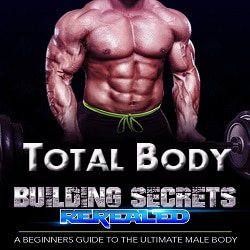 Beginner Muscle Builders