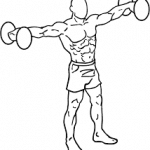 Dumbbell Raise - Side Lateral exercise