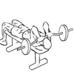 Lying Triceps Push weight lifting exercise