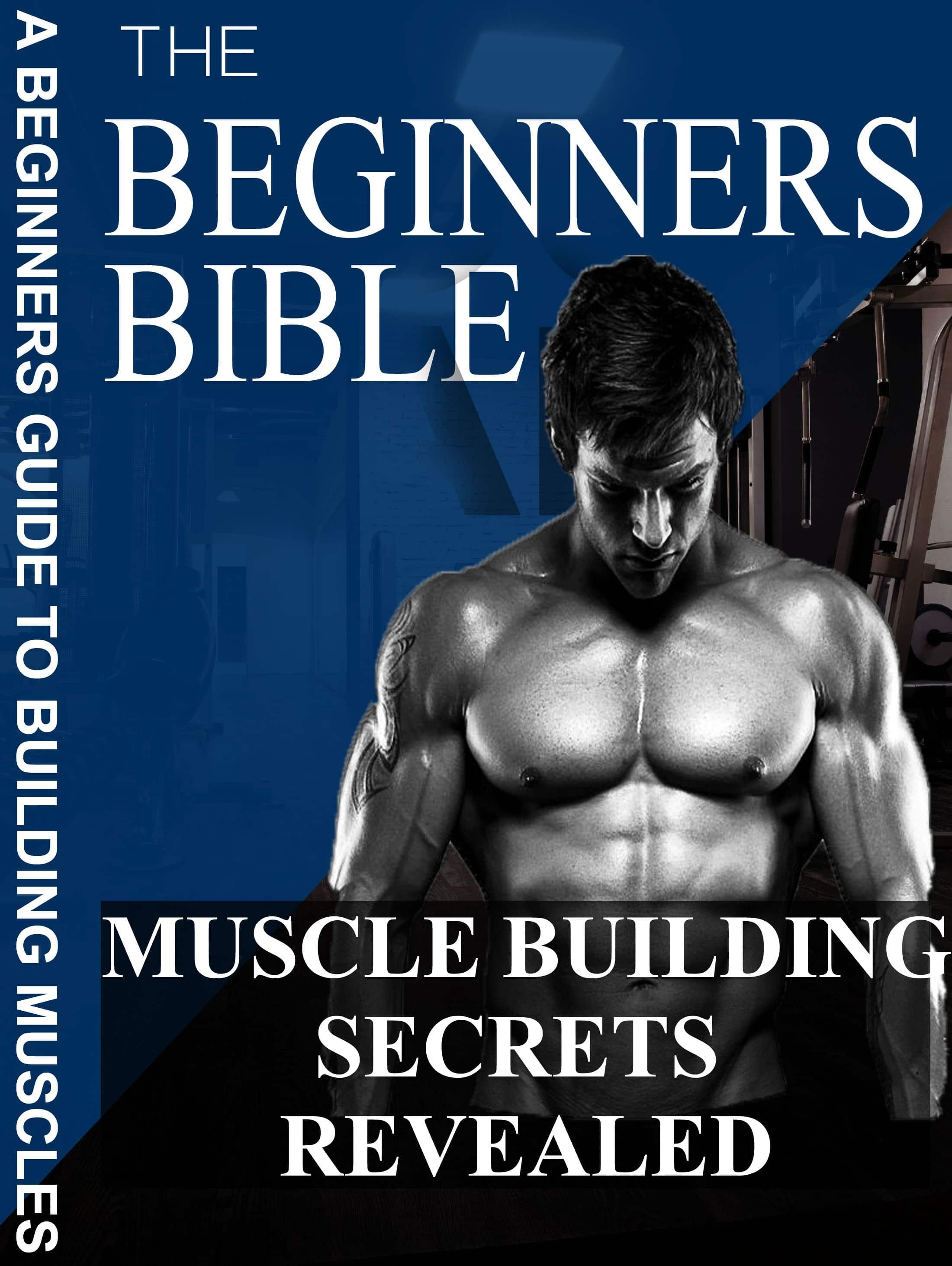 A Beginners Muscle Handbook